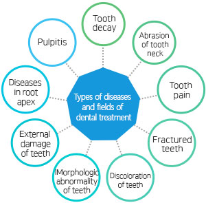 Types of diseases and fields of dental treatment Tooth decay, abrasion of tooth neck, tooth pain, fractured teeth, discoloration of teeth, morphologic abnormality of teeth, external damage of teeth, diseases in root apex, pulpitis